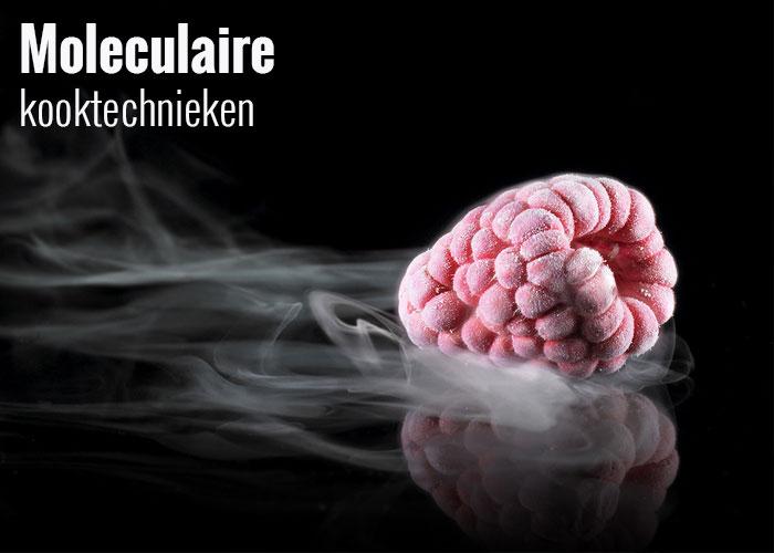 moleculaire-kooktechnieken